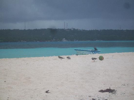 Decameron San Luis: el mar de los 7 colores