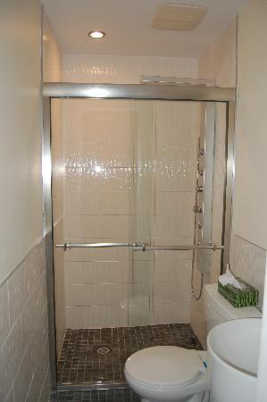 Le Chasseur B&B : s.d.b./bathroom chambre/room 1