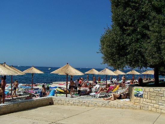 Hotel Delfin: beach