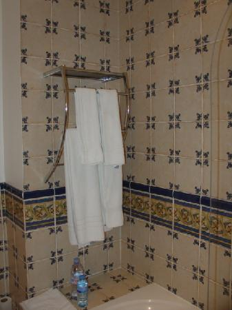 Hotel De Vigniamont: Bathroom of our suite