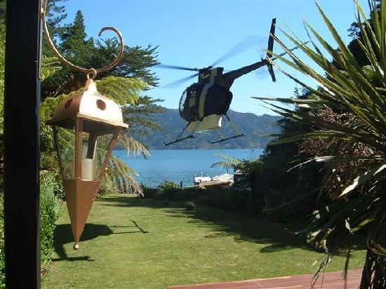 Tawa Cove Lodge/ D B&B: alternative transport to water taxi on back lawn,