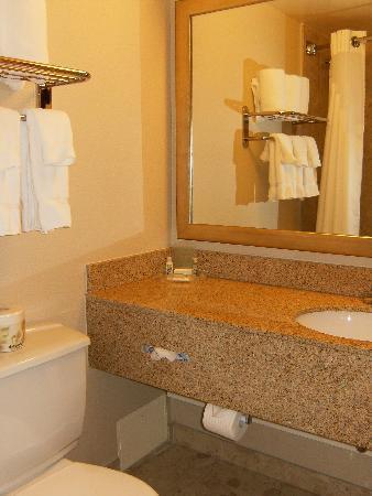 Holiday Inn Toronto International Airport : bathroom (1)