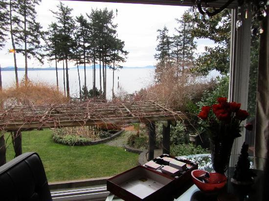 Dancing Firs Bed and Breakfast: View from upstairs Bay View Suite in March