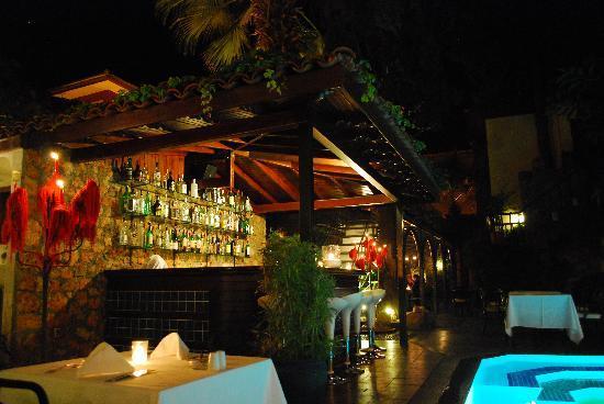 Alp Pasa Hotel : Pool side bar/restaurant