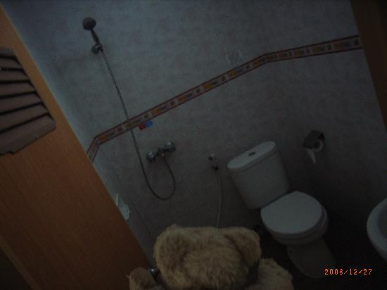 Gloria Amanda Hotel: シャワーとトイレはこんな感じです。