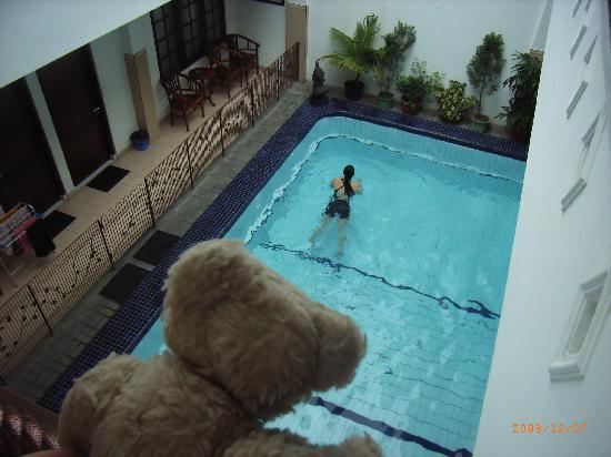 Gloria Amanda Hotel: 豪華プール付。海パンは近所の路上で購入可能でした。