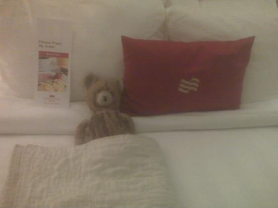 Crowne Plaza Hotel Reading: Teddy felt right at home!