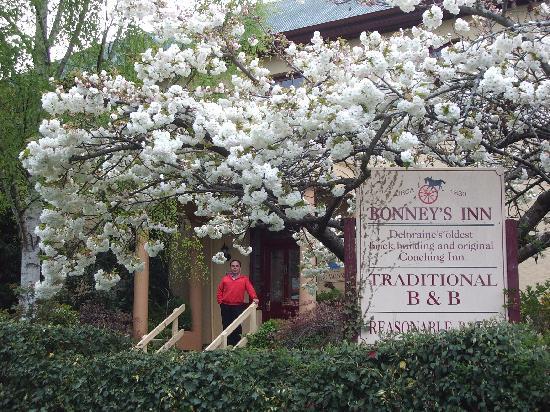 Bonney's Inn in Spring