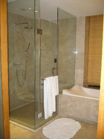 il bagno con finestra ,cosa rara,da' luce anche all'antibagno, Disegni interni