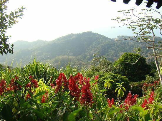 El Roble, Costa Rica: One view from  Villa Caletas, Awesome!