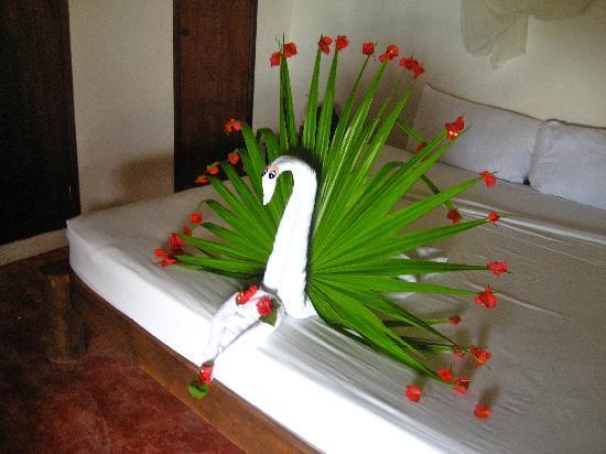 Poc-na Tulum: Birdee by Griselda