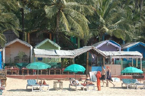 ... honeymoon island - Picture of Palolem Beach, Canacona - TripAdvisor