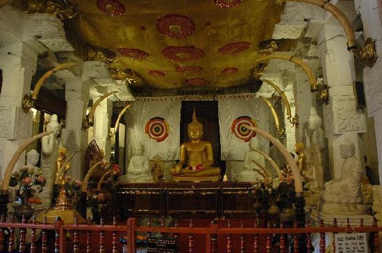 Kandy, Sri Lanka: Im Zahntempel