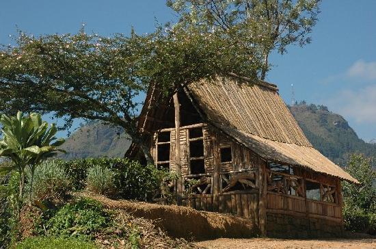 Kandy, Sri Lanka: Im Hochland