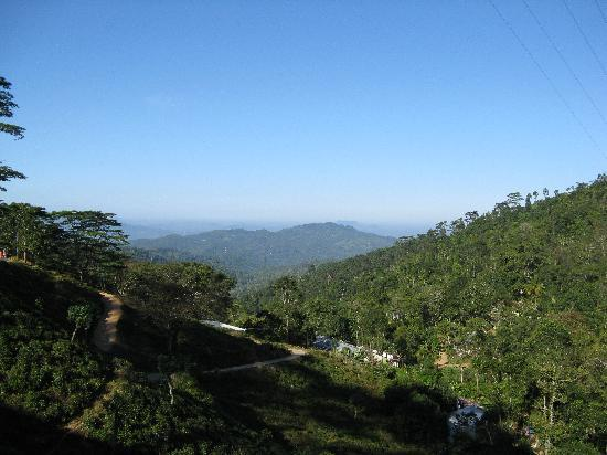 Rangala House: View from guest house