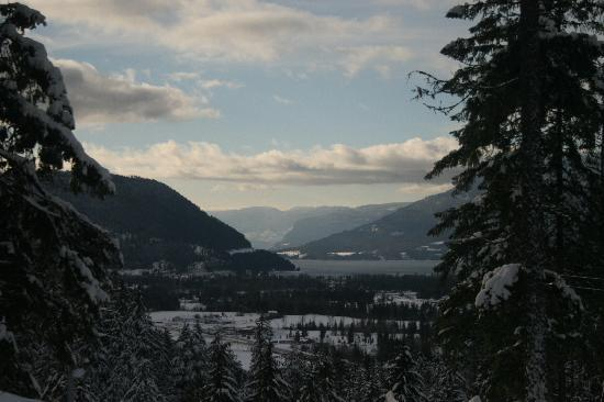 Owlhead Creek Bed &Breakfast: Owlhead Creek view of Shuswap
