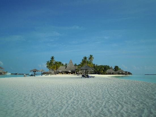 Veligandu Island Resort & Spa: resort
