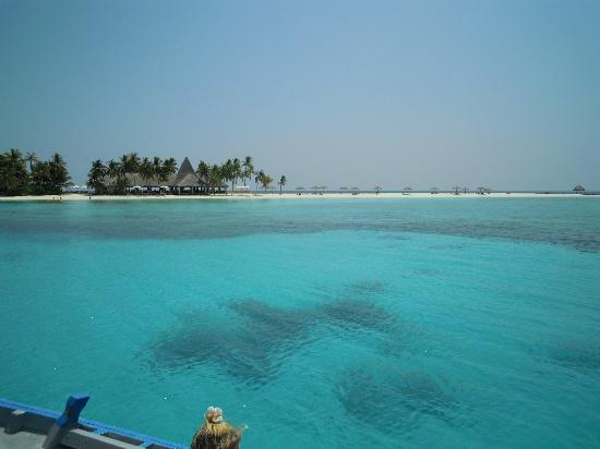 Veligandu Island Resort & Spa: resort