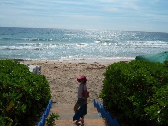 Pueblo Caribe Hotel: esta es la playa que esta frente al hotel con toldos y sillas de playa