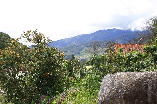 David, Panama: guadalupe