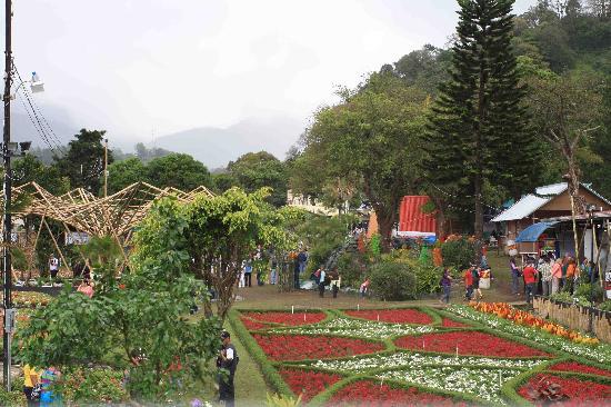 David, Panama: Boquete-feria de las flore y del café