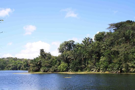 Panama: Parco Soberania