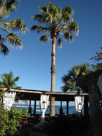 Villa Montana Beach Resort : Restaurant
