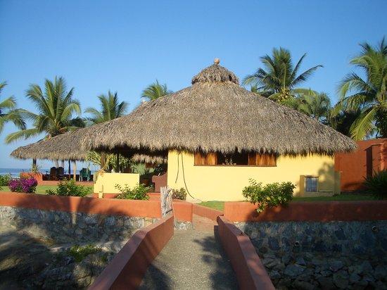 写真Majahua Palms枚