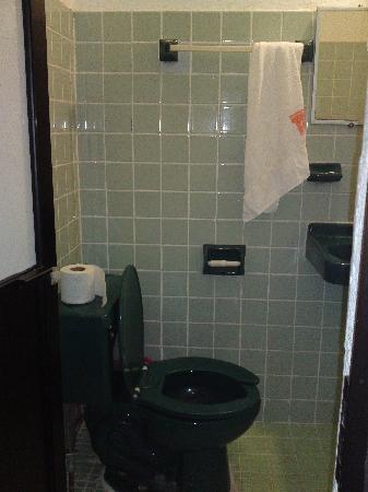 Hotel Del Carmen: el baño