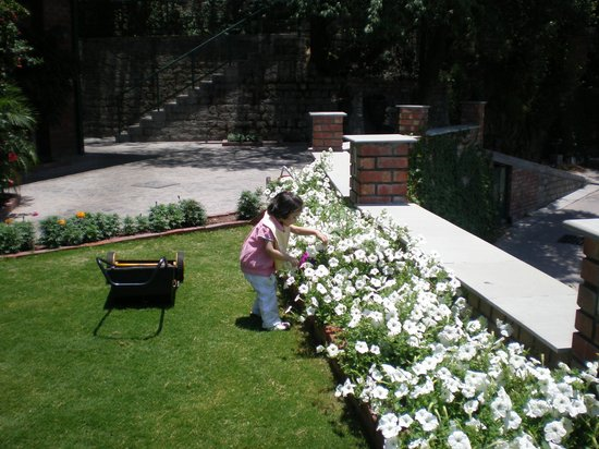 Baikunth Resort Kasauli: small garden on side
