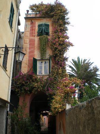 Cervo, Italien: Casa con i tipici colori della Liguria