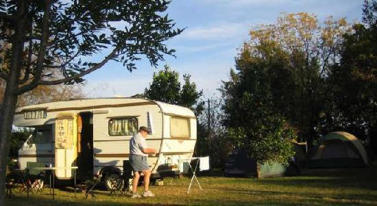 Magnolia Guesthouse : Camping