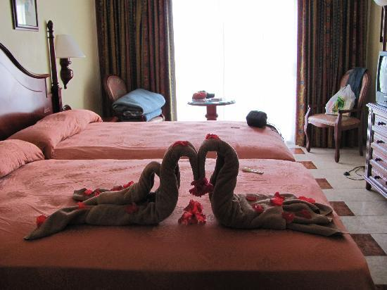ريو نيجريل أول إنكلوسف: room