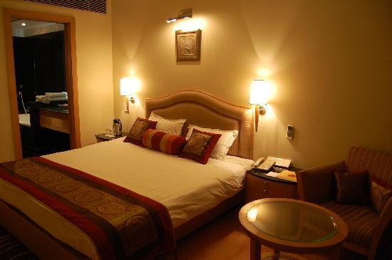 Hotel Yamuna View : Dlx room
