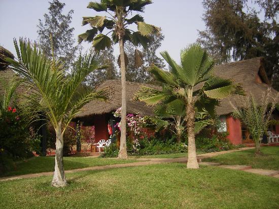 Royal Horizon Baobab : jardin du baobab