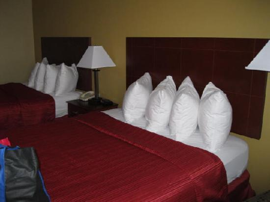 Quality Inn and Suites Davenport: Our room