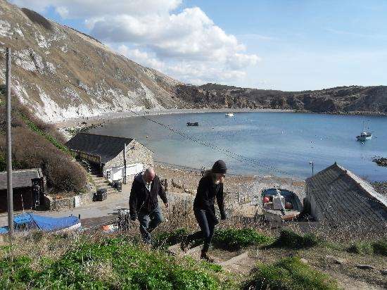 Wilton Guest House: lulworth Cove