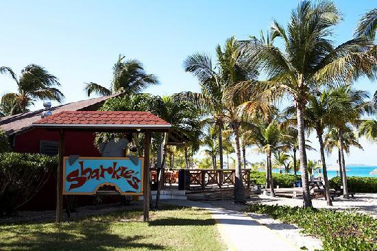 Club Med Turkoise, Turks & Caicos: Sharkie's Bar
