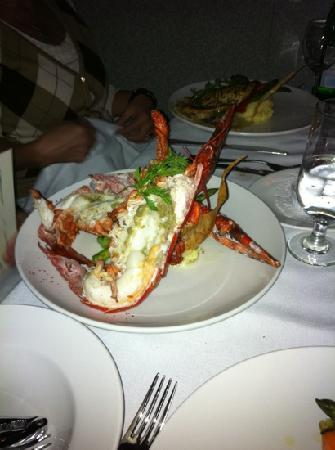Pink Peppercorn Seafood Restaurant : steamed lobster