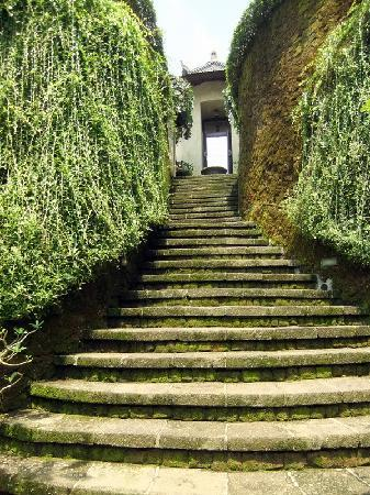 Villa di Abing: Stairs up from the pool