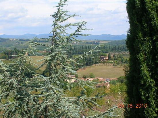 Agriturismo Malafrasca: A view from our room