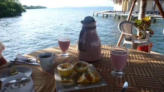 Bocas Villas : Fresh Breakfast Every Morning
