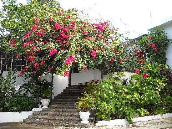 San San Tropez Villa-Hotel: San San Tropez Entrance