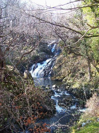 Plas Dolmelynllyn Hall Hotel: Wonderful Waterfall