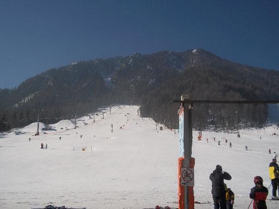 Hotel Lipa: Main blue slope in Kranska Gora