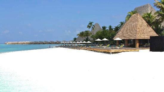Anantara Kihavah Maldives Villas: main pool and bar