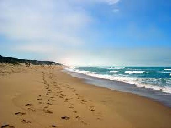 Woodside Beach Caravan Park Reviews
