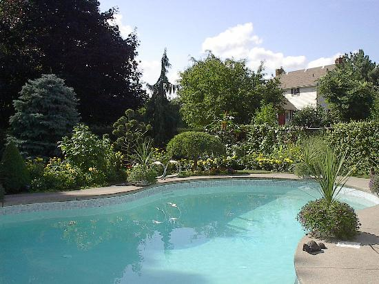 Bruce Manor: Solar heated pool