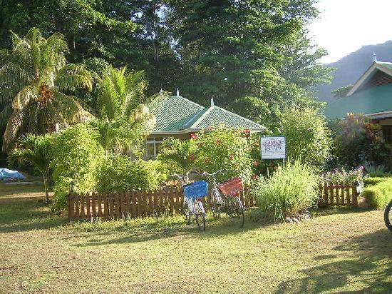 Casa De Leela: il giardino