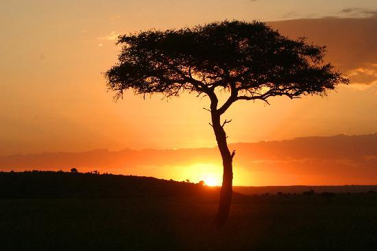 Fairmont Mara Safari Club: Mara sunset